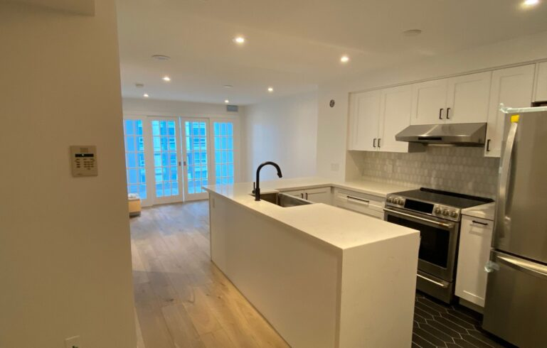 luxury condo apartment with small kitchen and open space living room - condo kitchen renovation